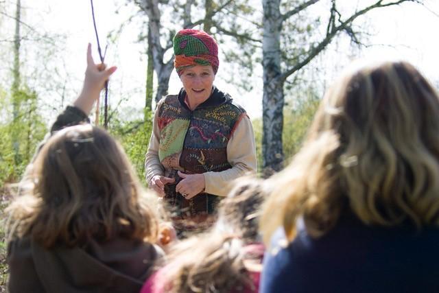 Spaziergang im Trostberger Auwald: Geschichten die in Bäumen wohnen